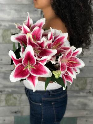 Stargazer lilies – Deluxe